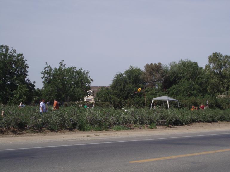 Rancho Notso Grande - Eazy Picking