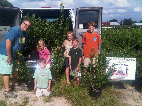 "DiMeo Farms & Blueberry Plants Nursery - These kids chose DiMeo Farms when they wanted to buy blueberry plants for their dad as a Father's Day gift. What a great gift, one that will keep giving free blueberries for the rest of their lives. Not to mention, increase the value of their dad's property. Many realtors will tell you, it's always that ""little blueberry patch"" in the back yard that ends up selling the home. CALL: (609) 561-5905 to start growing your own blueberries now."