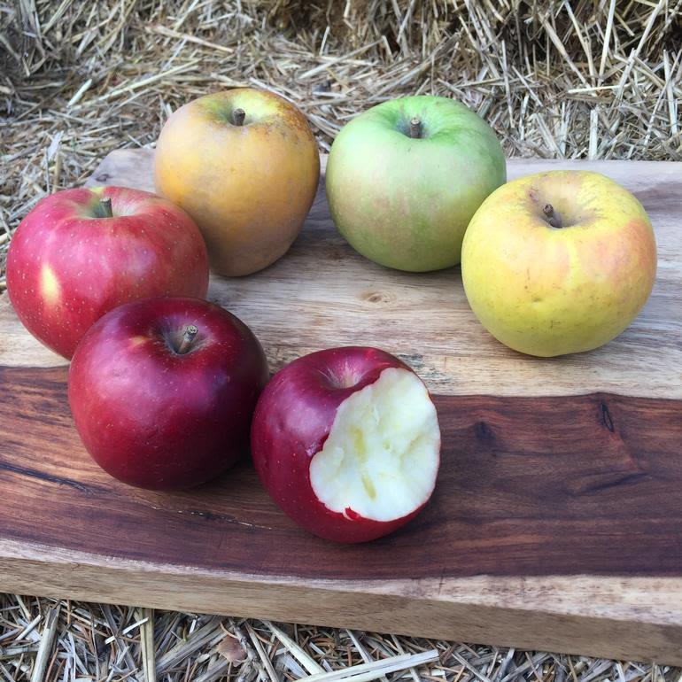 Johnston Fruit Farms - Image 0