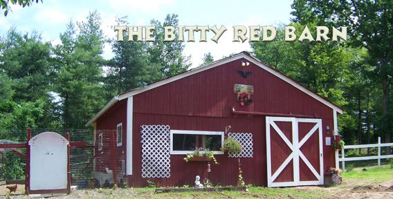 The Bitty Red Barn - Image 0