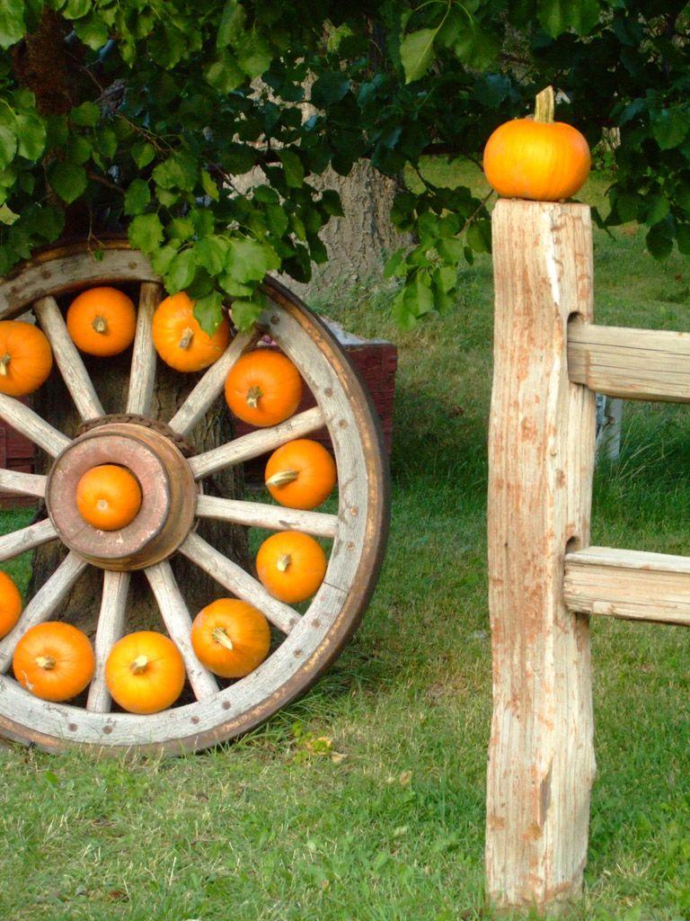 Parsons Farm - Image 2
