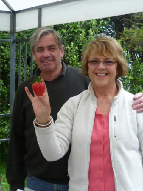 Hedgerows Hydroponic Strawberries - The owners Mary and Ian welcome you to the farm