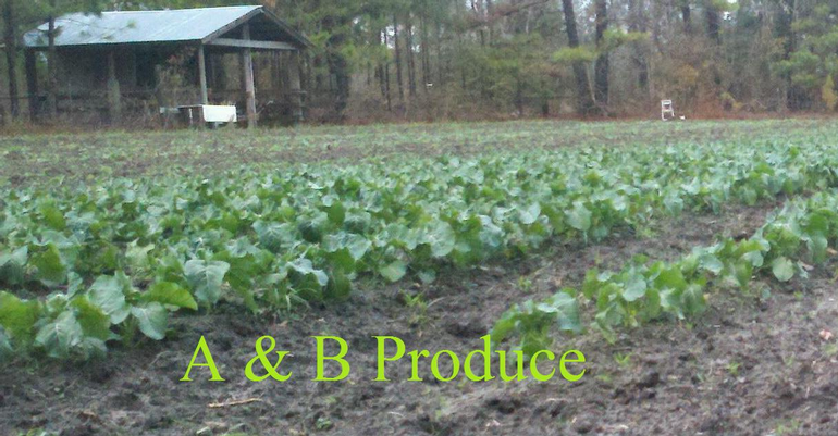 A & B Produce - We farm parttime and enjoy everything we do and love kids to be around.