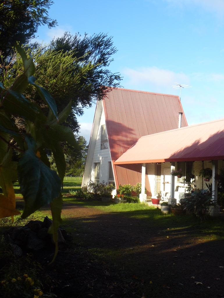 Collie Blueberry Farm - Our house