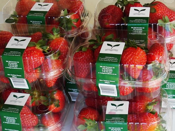 Hedgerows Hydroponic Strawberries - 250 gm punnet of fine strawberries
