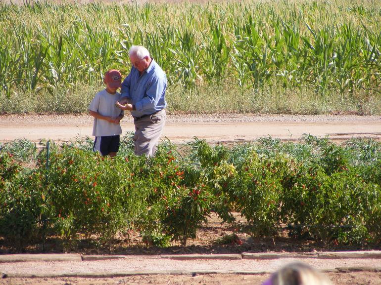 Vertuccio Farms - Image 2