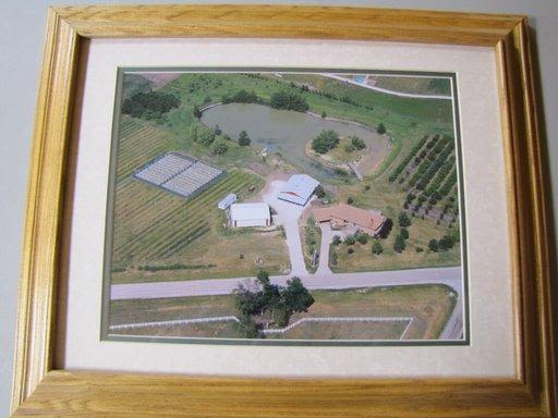 Knutson's Country Harvest - Knutson's Country harvest from above