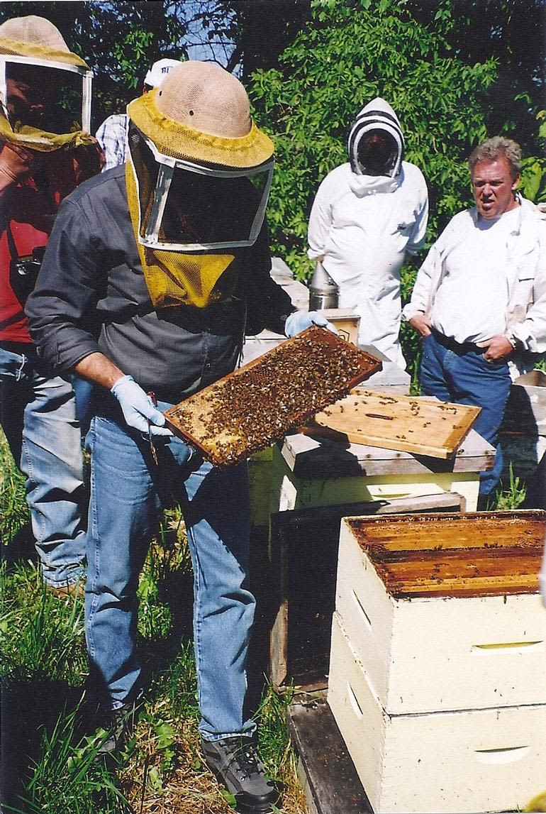 Dickey Bee Honey Inc - Dickey Bee Field Day with other Beekeepers  Bee Inspector checks the hives