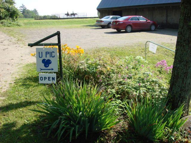 Goulden Ridge Farm - Image 0