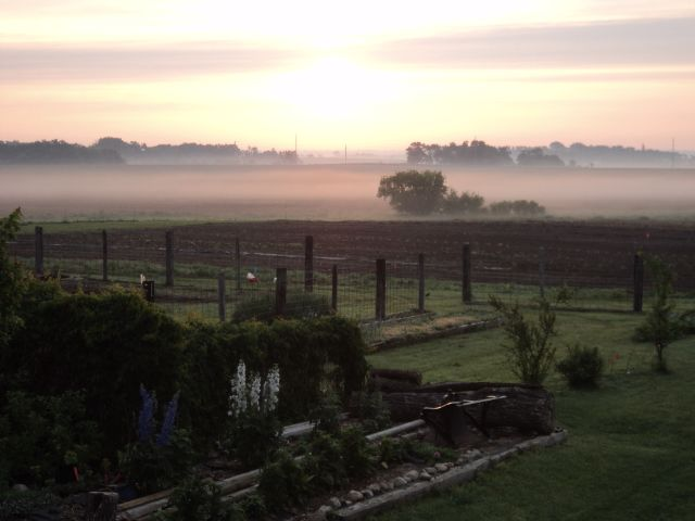 Good Roots Farm and Gardens - Morning sunrise...makes the hard work worth it!