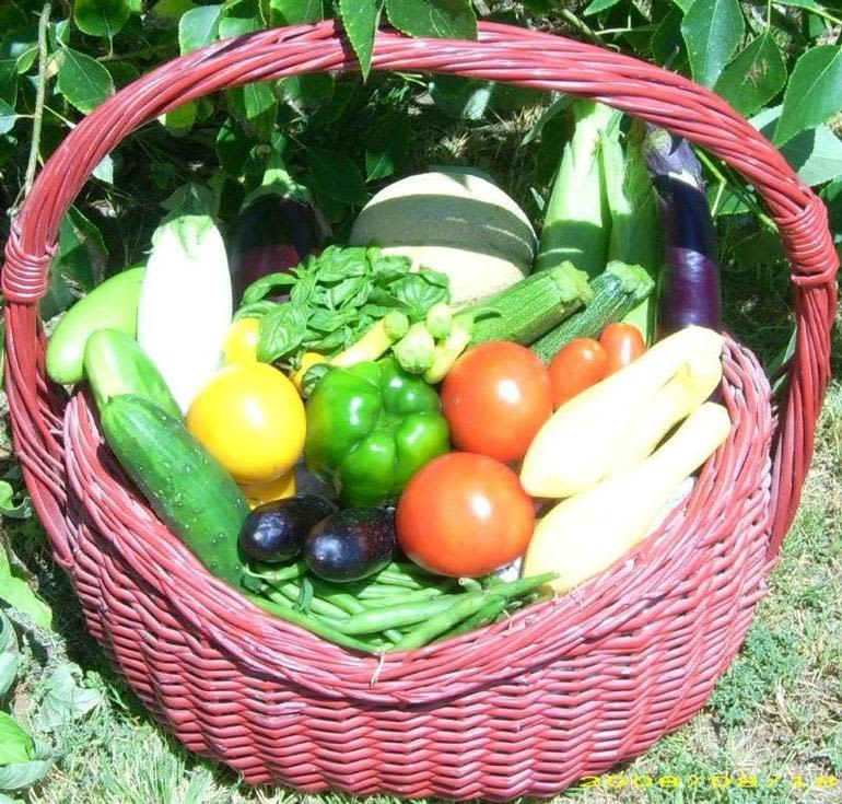 Rise and Shine Farms - CSA Basket