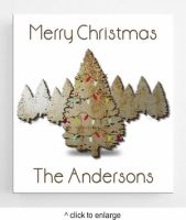 Personalized Christmas Canvas Signs