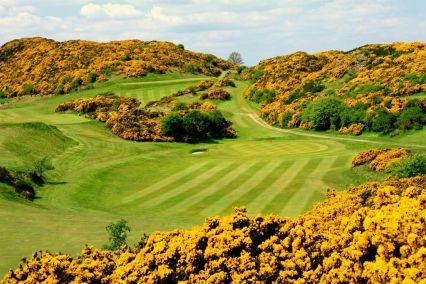 Tricky par 3 of the Braid Hills Golf Club surrounded by beautiful yellow gorse