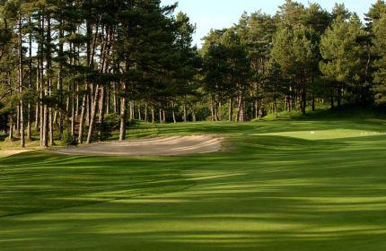 golf-dhardelot-pas-de-calais-france-les-pins