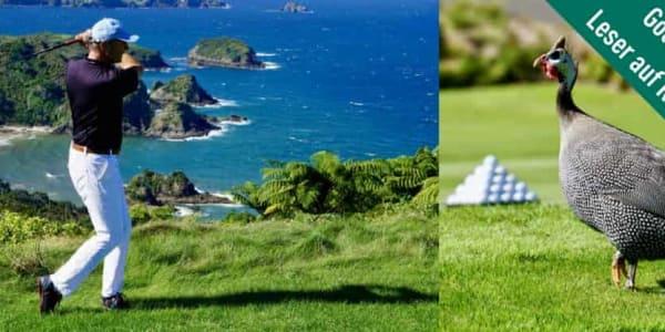 Golf Post Leser Jürgen Linnenbürger kam auf seinen zahlreichen Golfreisen auch in Neuseeland vorbei und berichtet von diesem sensationellen Trip. (Foto: Jürgen Linnenbürger)