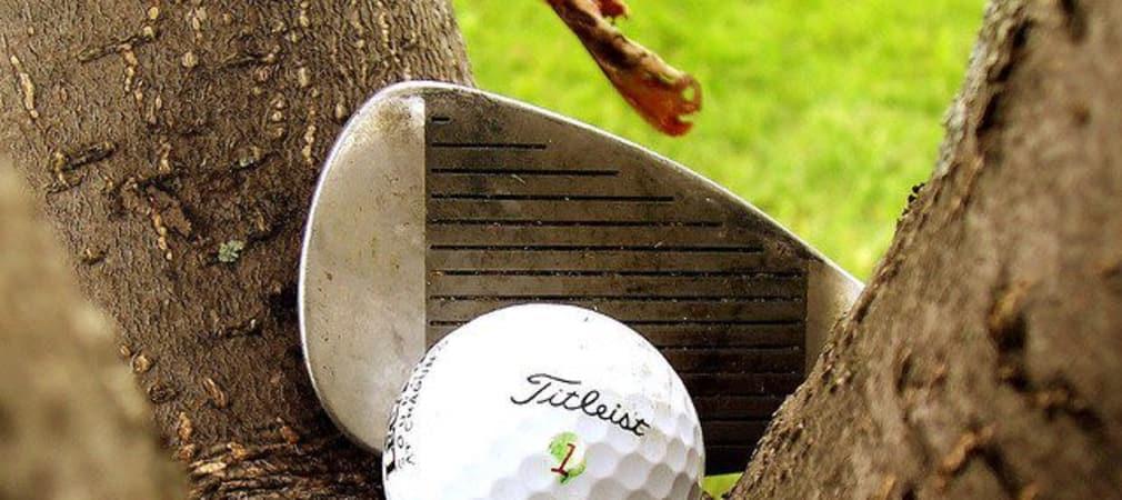 Troubleshot: Ball im Baum