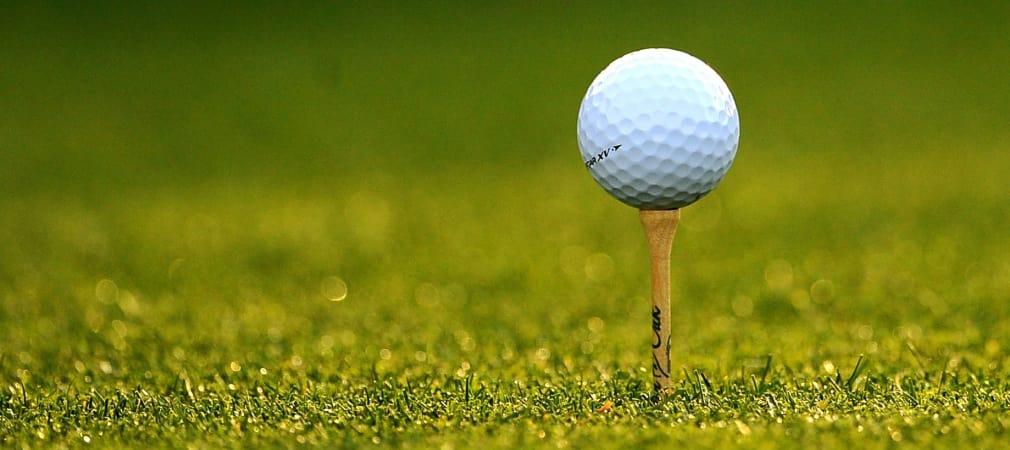 VCG-Verbandstag Golf Post Talk