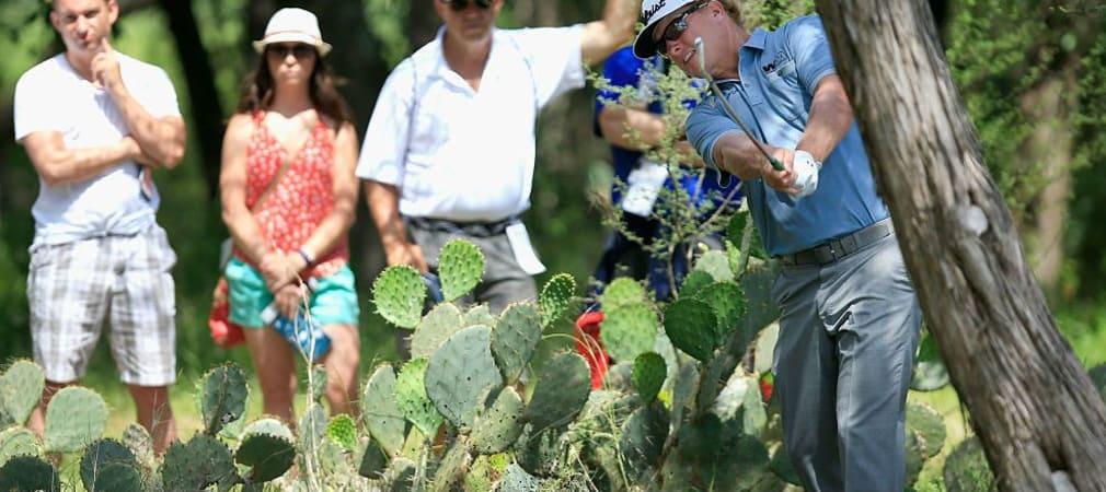Bei der Valero Texas Open sind oftmals stachelige Hindernisse im Weg. (Foto: Getty)