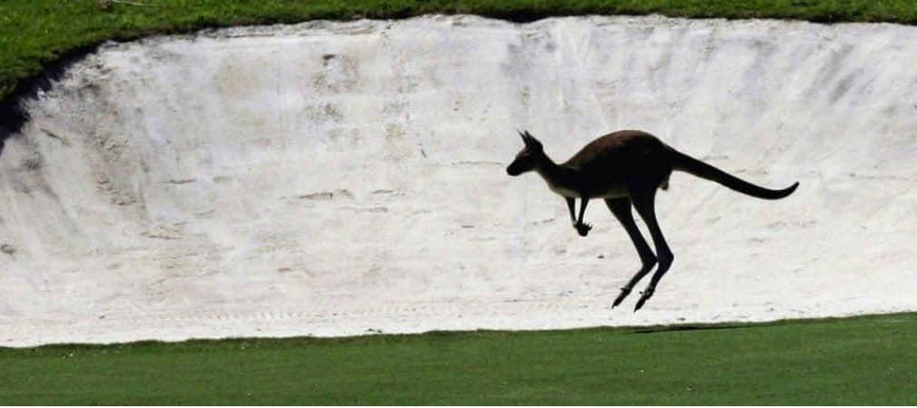 Im Lake Karrinyup Country Club wird es beim Finale des World Super 6 Perth nochmal besonders spannend, denn Matchplay ist angesagt. (Foto: Getty)