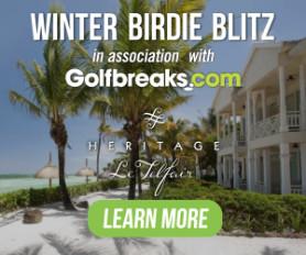 Winter Birdie Blitz
