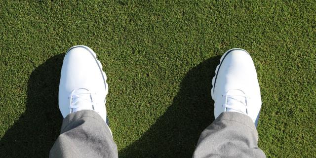 FootJoy Pro S/L