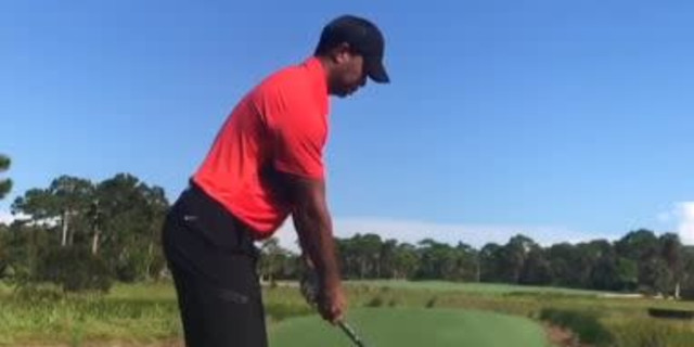 Should We Be Excited by Those Swing Clips of Tiger?