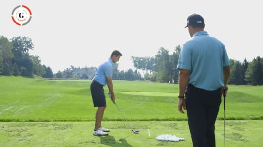 Lesson 2: Alignment and Hybrids