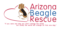 Arizona Beagle Rescue - AZBR