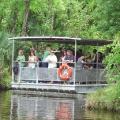 Jean Lafitte Swamp Tour deals alerts