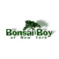 Bonsai Boy of New York deals alerts
