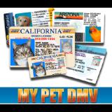 MyPetDMV coupons