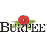 Burpee coupons