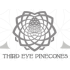 Third Eye Pinecones coupons and coupon codes