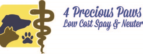 4 Precious Paws Low Cost Spay & Neuter