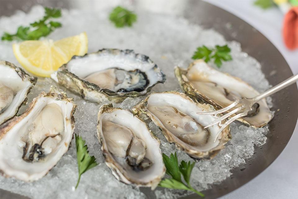 victory meat seafood elmhurst il