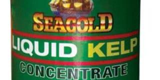 seagold.JPG