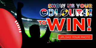 show us colours2