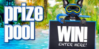prize pool slider
