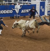 cowboys 1249455 960 720