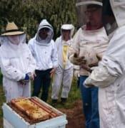 beekeeping tas.JPG