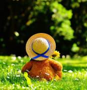 teddy bear 797577 960 720