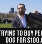 selldogs