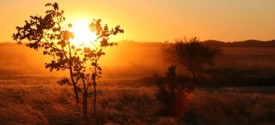 Sunrise in the Oz Outback