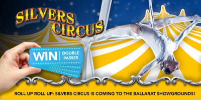 silvers circus slider