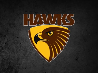 Injury issues for Hawks