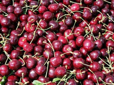 cherries-1425293_640.jpg