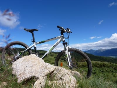 mountain-biking-598506_960_720.jpg