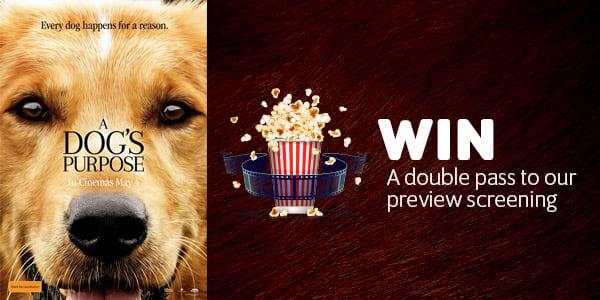 movie a dogs purpose