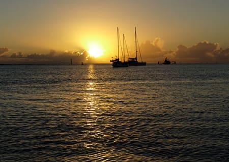 Burnett-River-Cruises-image.jpg