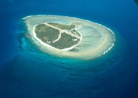 Lady_Elliot_Island.jpg
